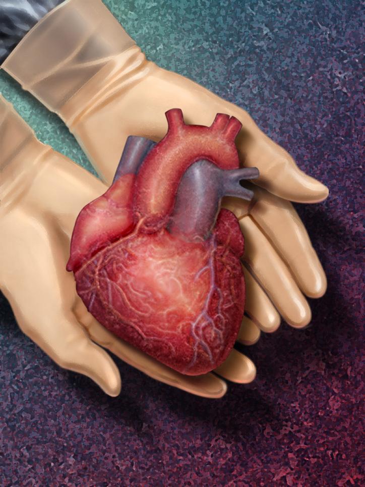 Основные способы профилактики заболеваний сердца